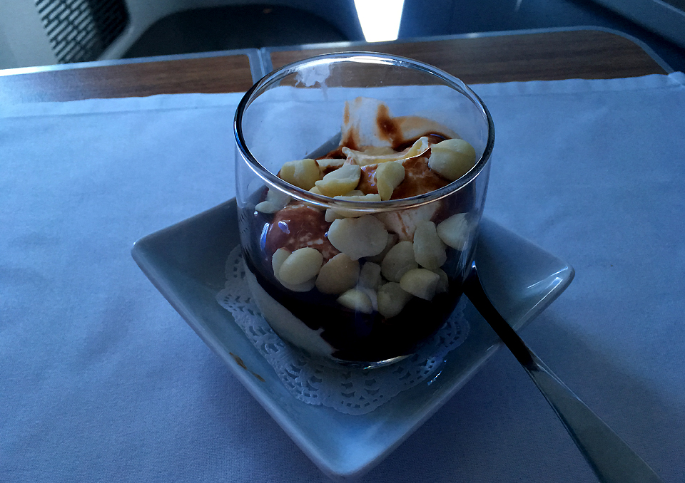 american-airlines-business-class-hot-fudge-sundae